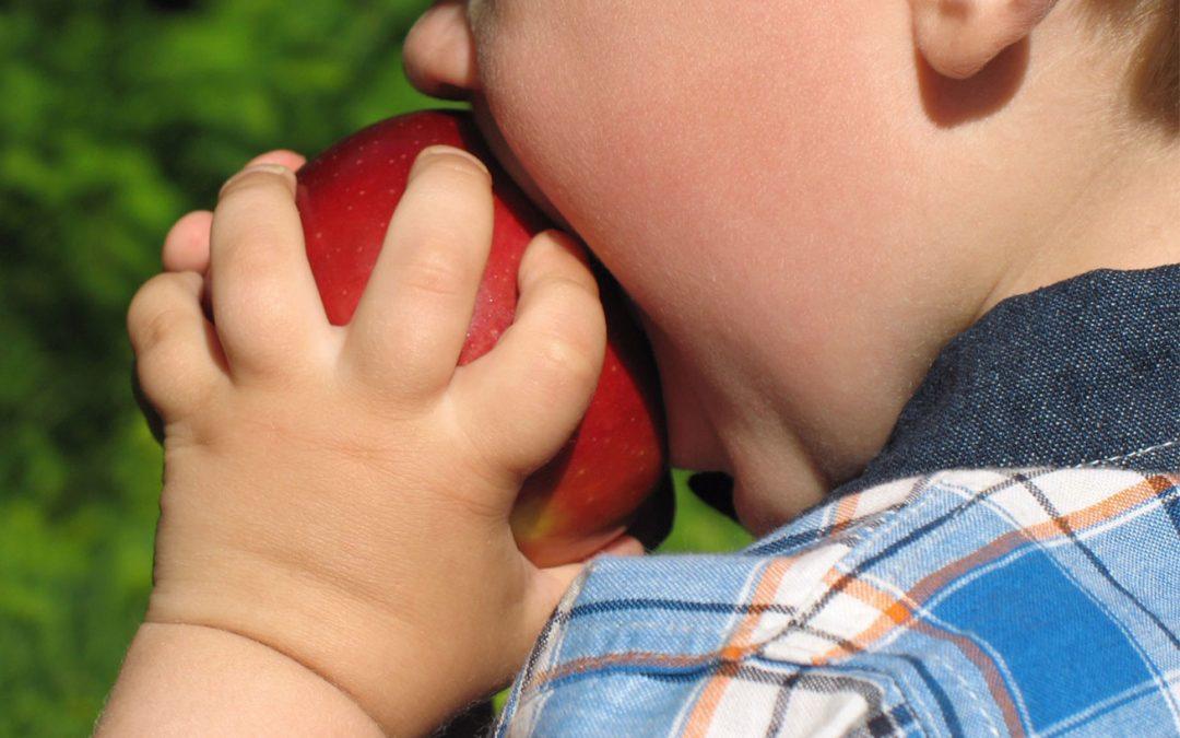 Como combater obesidade infantil?